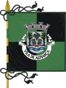 Bandeira oficial do munic�pio