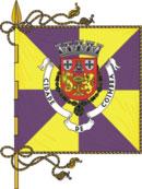 bandeira do município de Coimbra