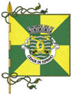 abre página com detalhes do município de Espinho