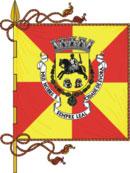 bandeira do município de Évora