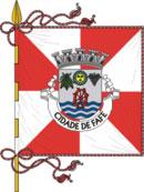 abre página com detalhes do município de Fafe