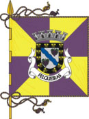abre página com detalhes do município de Felgueiras