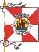abre página com detalhes do município de Leiria