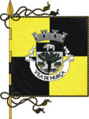 Municipality Oficial Flag