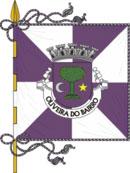 abre página com detalhes do muniípio de Oliveira do Bairro