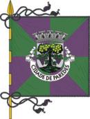 abre página com detalhes do município de Paredes