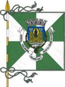 bandeira do município no Porto