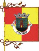 Bandeira oficial do município