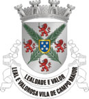 Brasão de Armas do Município de Campo Maior