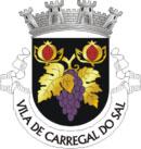 Brasão do município de Carregal do Sal
