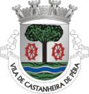 Brasão de Armas do Município de Castanheira de Pêra