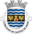 Brasão de Armas do Município de Castelo de Paiva