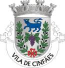 Brasão do município de Cinfães