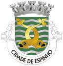 Brasão do município de Espinho