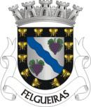 Brasão do município de Felgueiras