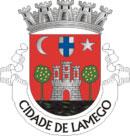Brasão do município de Lamego