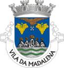 Brasão do município de Madalena