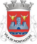 Brasão do município de Montalegre