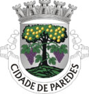 Brasão do município de Paredes