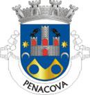 Brasão de Armas do Município de Penacova