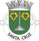 Brasão do município de Santa Cruz