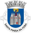 Brasão de Armas do Município de Santa Maria da Feira
