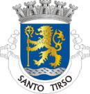Brasão do município de Santo Tirso
