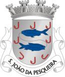 Brasão do município de São João da Pesqueira
