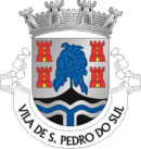 Brasão do município de São Pedro do Sul