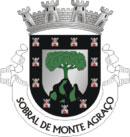 Brasão do município de Sobral de Monte Agraço