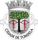 Brasão do município de Tondela