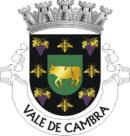 Brasão de Armas do Município de Vale de Cambra