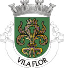 Brasão do município de Vila Flor