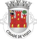Brasão do município de Viseu