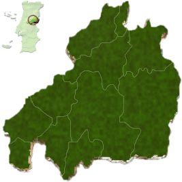 mapa do distrito de Castelo Branco