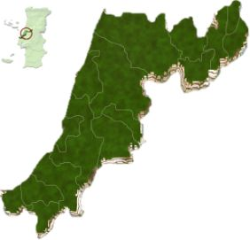 mapa do distrito de Leiria