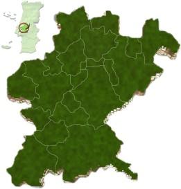 mapa do distrito de Santarém