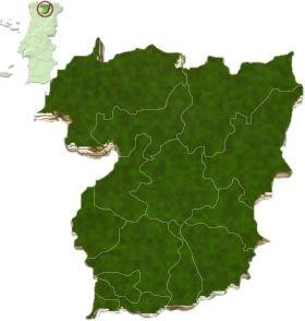 Localização do distrito de Vila Real no mapa de Portugal