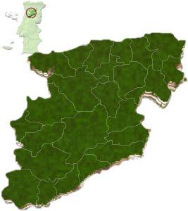 Localização do distrito de Viseu no mapa de Portugal